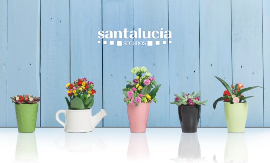 Branding primavera